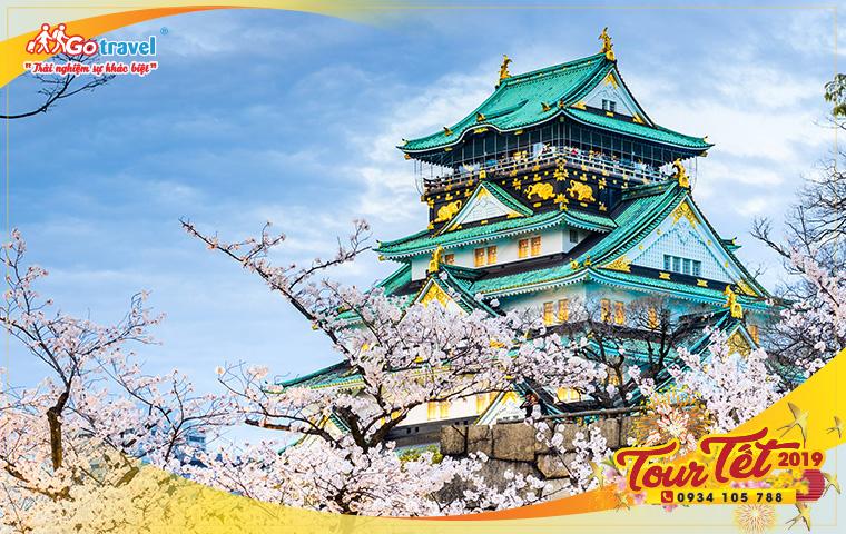 Tour Tết 2019: Tour Nhật Bản Mùng 3 (5N4Đ)