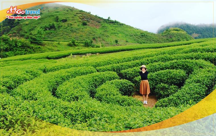 Tour Hà Nội - Cao Nguyên - Mộc Châu